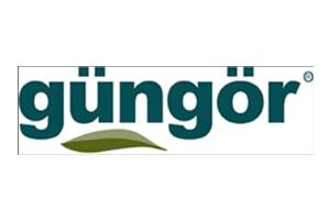 gungor